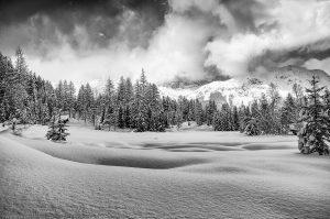 Wald Berge Schnee Schweiz Winter
