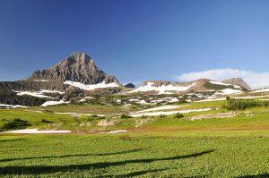 Glaciers Nationalpark Gras Berge Schnee