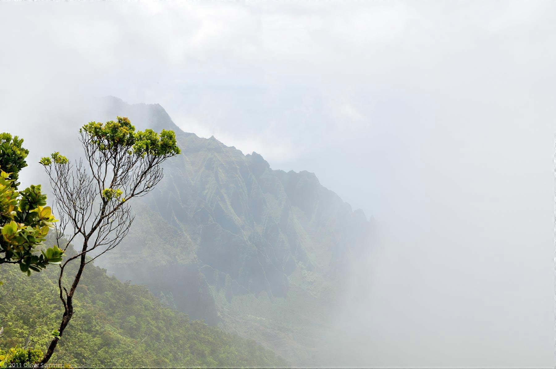 Kalalau Schlucht Nebel Kauai Hawaii