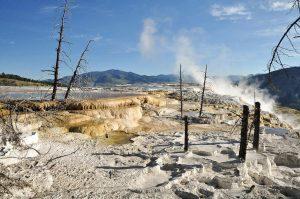 Mammoth Hot Springs Yellowstone Dampf Schwefel