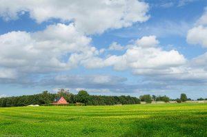 Landwirtschaft Bauernhof Feld Haus Dänemark
